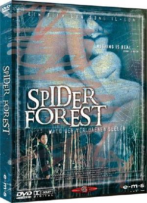 spider_forest.jpg